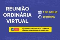 Reunião Ordinária Virtual